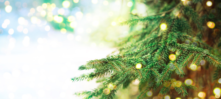 How To Achieve a Green Christmas
