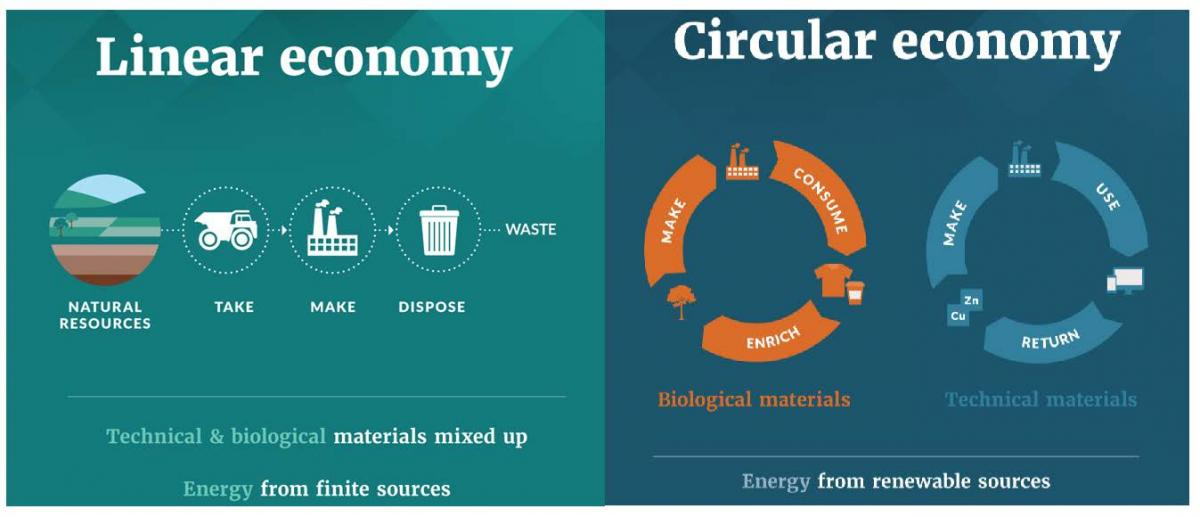 How Swapabee is contributing to Waste Reduction