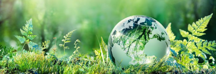 How Sustainability is Sparking Innovation